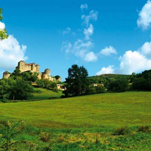 Castello di Pierreclos