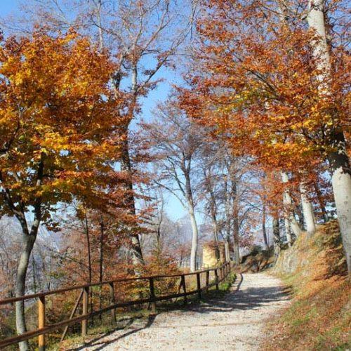 Parco del Monte Barro - Lecco
