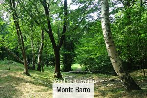 FestAmbiente Monte Barro