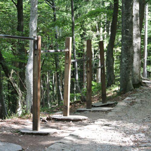 Pian dei Resinelli sentiero verso Belvedere percorso vita