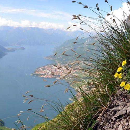 Alpe di Pianezzo Corni di Canzo - Panorama