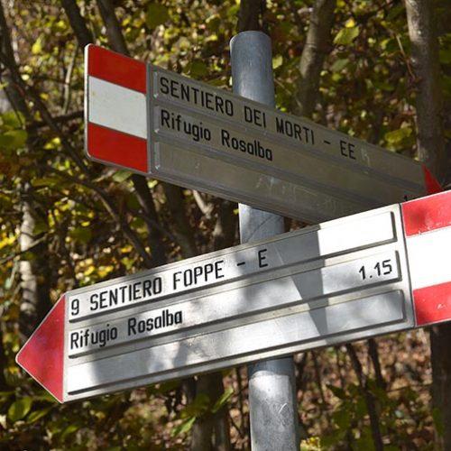 Sentiero verso il Rifugio Rosalba