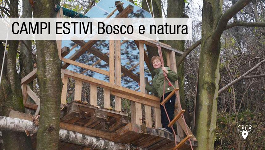brianza_campo_estivo_ricreativo_bosco-natura