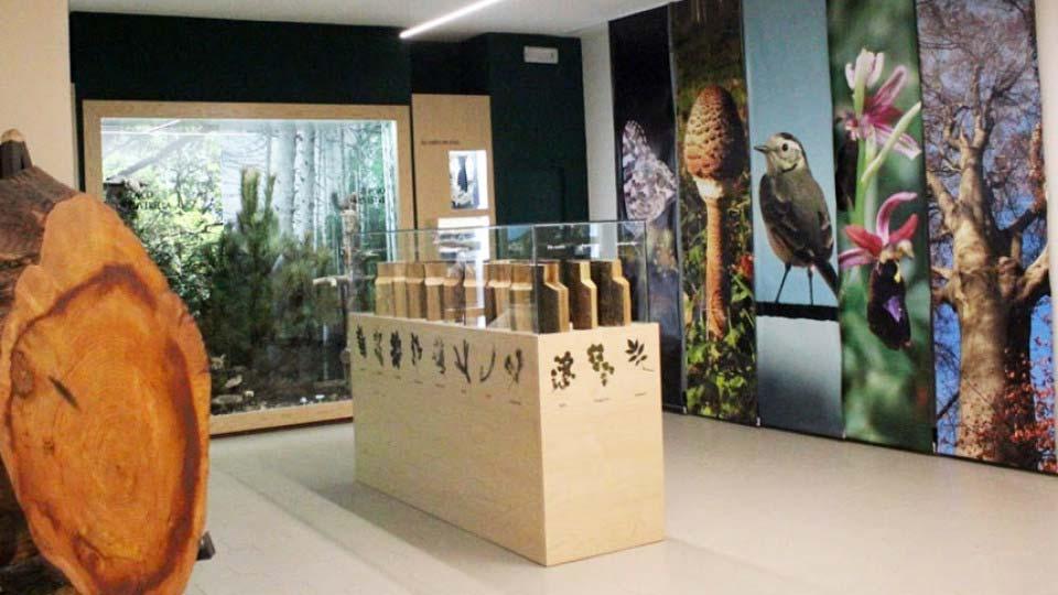 Museo Archeologico del Barro – Galbiate