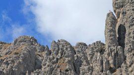 Grignetta Cresta Sinigaglia - Dario Milani