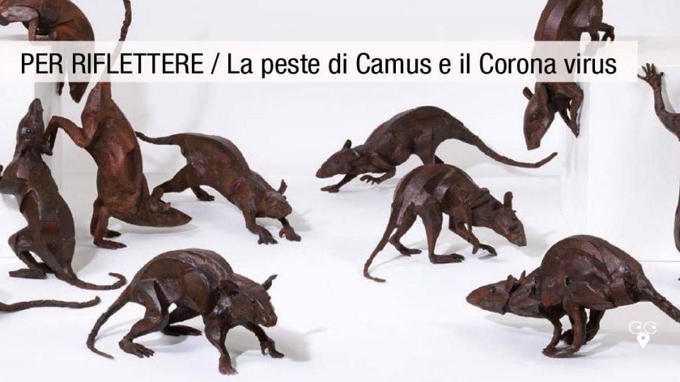 la peste di Camus