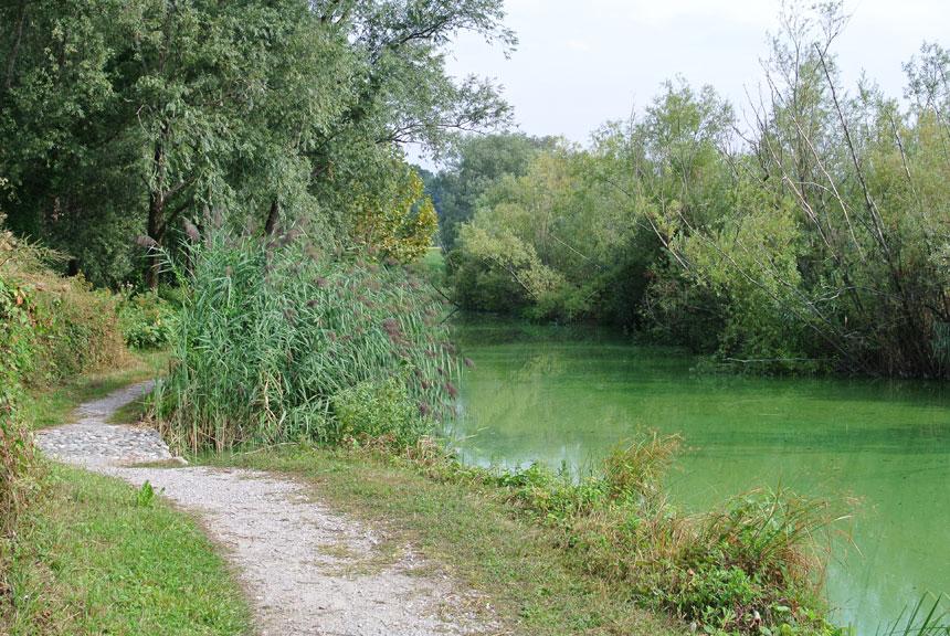 Lago di Sartirana passeggiata