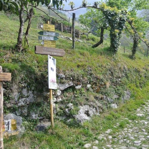Bivio sentiero n. 1 Stoppani - Resegone