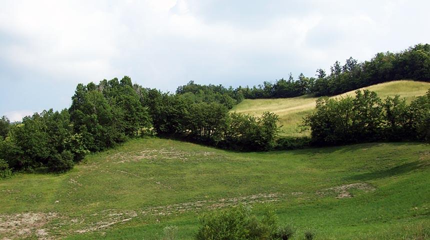 Montevecchia Parco del Curone