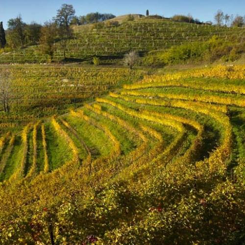 Montevecchia - Lecco