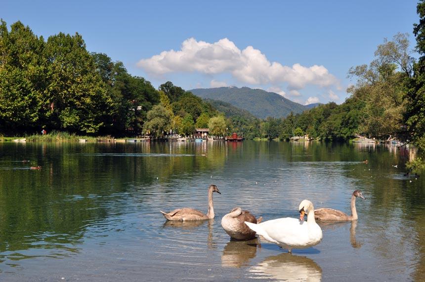 Villa D Adda Lago Di Como
