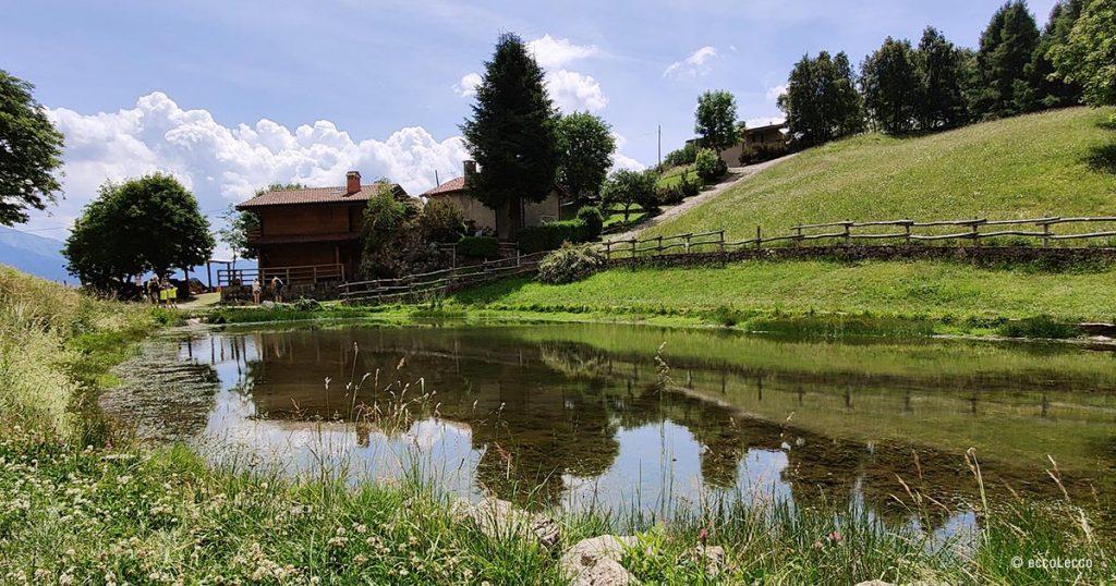 Sentiero traversata bassa delle Grigne al Pialeral