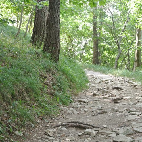 Piani Resinelli sentiero verso Belvedere anello basso