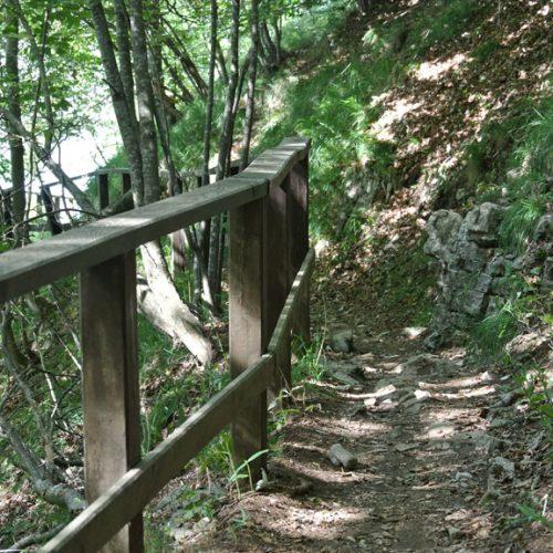 Piani Resinelli sentiero verso Belvedere