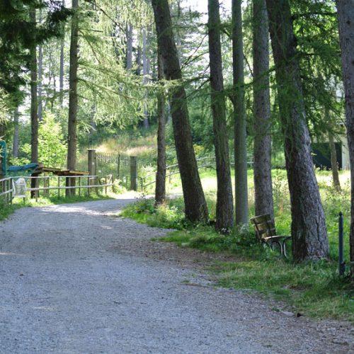 Piani Resinelli - sentiero verso il Parco Valentino