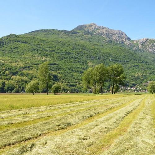 Tour in bici – Tra riserva naturale e forte medievale