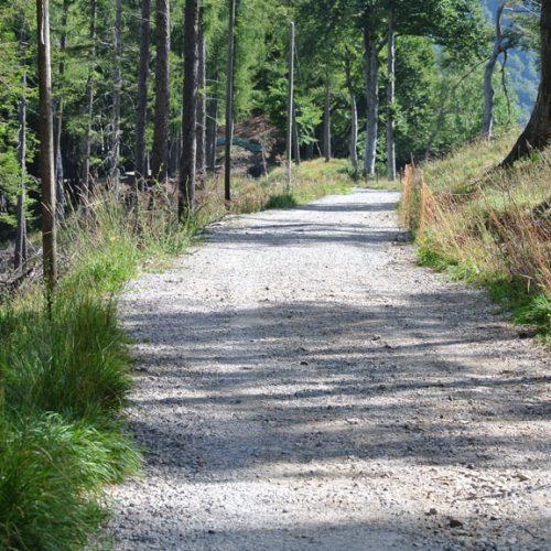 Piani Resinelli Parco Valentino sentiero