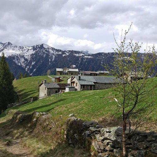 Sentiero per il Rifugio Alpe Piazza