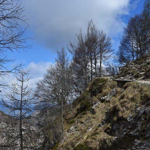 Sentiero Rifugio Bogani - Grigna Settentrionale