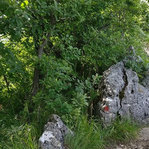 Monte San Martino Crocione - Lecco