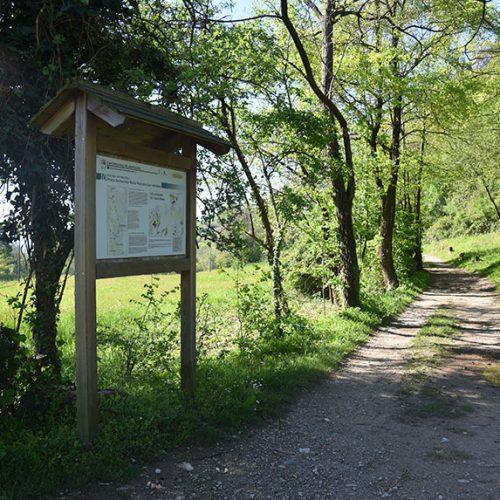 Sentiero per San Michele da Lecco