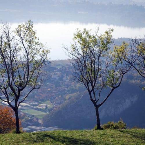 Tour a piedi – Emozioni nella natura di montagna