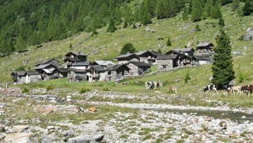 Val Bodengo Corte Terza