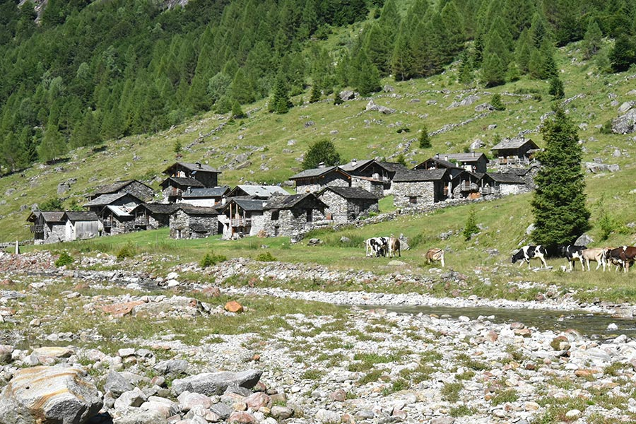 sentiero-dei-crotti-val-bodengo-corteterza