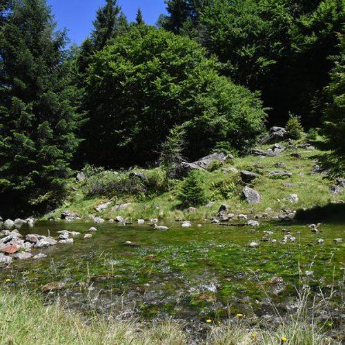 Sentiero dei Crotti in Val Bodengo