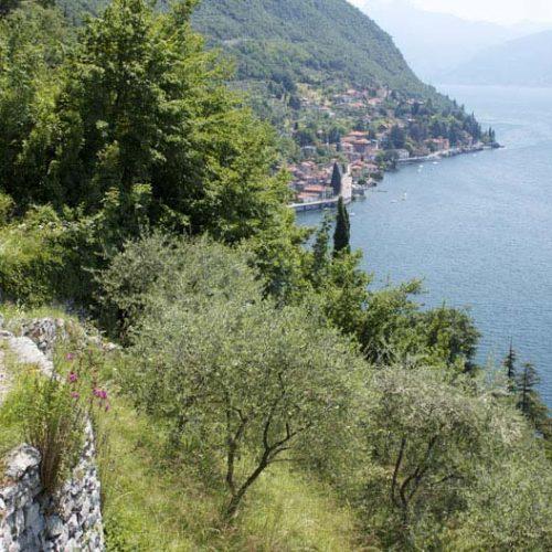 Sentiero del Viandante - Lecco