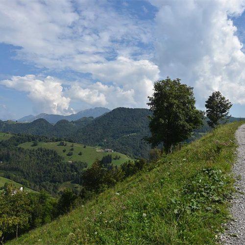 Sentiero dei Grandi Alberi - Morterone