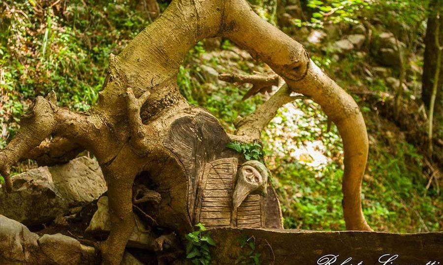 Spirito del bosco - Corni di Canzo